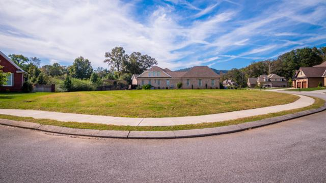 6559 Deep Canyon Rd, Hixson, TN 37343 (MLS #1289711) :: Keller Williams Realty | Barry and Diane Evans - The Evans Group
