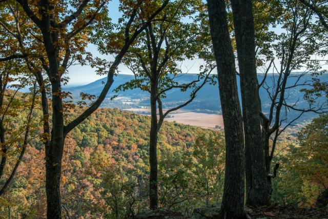 Lot 1 Dougherty Gap Rd, Cloudland, GA 30731 (MLS #1289838) :: Keller Williams Realty | Barry and Diane Evans - The Evans Group