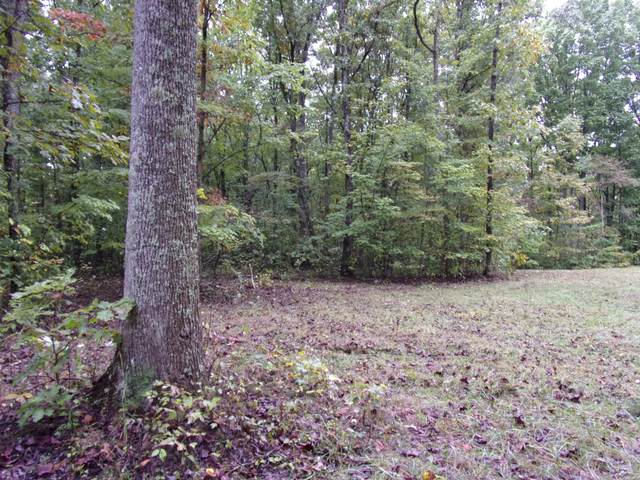 0 Fern Hill Rd #47, Pikeville, TN 37367 (MLS #1289841) :: Chattanooga Property Shop