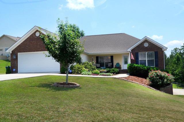 135 Lillie Ridge Dr, Dayton, TN 37321 (MLS #1290077) :: Grace Frank Group
