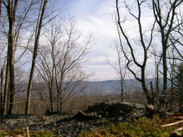 Lot 217 Jason Rd, Pikeville, TN 37367 (MLS #1291852) :: The Robinson Team