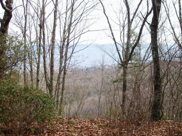 Lot 218 Jason Rd, Pikeville, TN 37367 (MLS #1291875) :: The Mark Hite Team