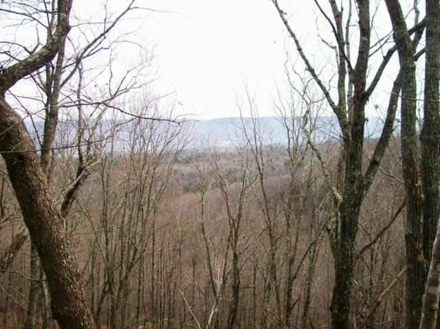 Lot 219 Jason Rd, Pikeville, TN 37367 (MLS #1291891) :: Keller Williams Realty | Barry and Diane Evans - The Evans Group