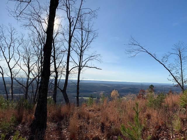 1097 Escape Dr #9, Evensville, TN 37332 (MLS #1292475) :: 7 Bridges Group