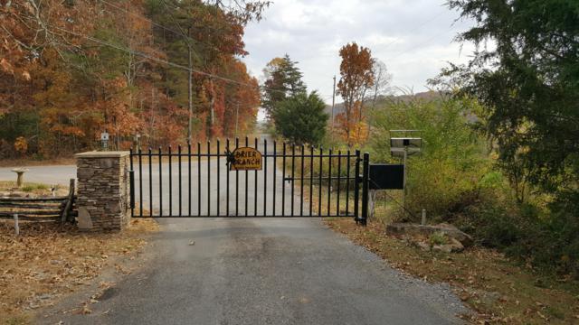 Lot 20 Brier Branch Rd #20, Graysville, TN 37338 (MLS #1294245) :: Chattanooga Property Shop