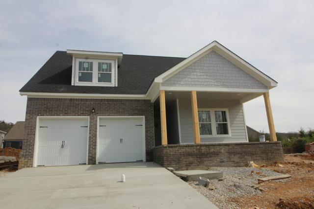 8905 Silver Maple Dr, Ooltewah, TN 37363 (MLS #1295986) :: Keller Williams Realty | Barry and Diane Evans - The Evans Group