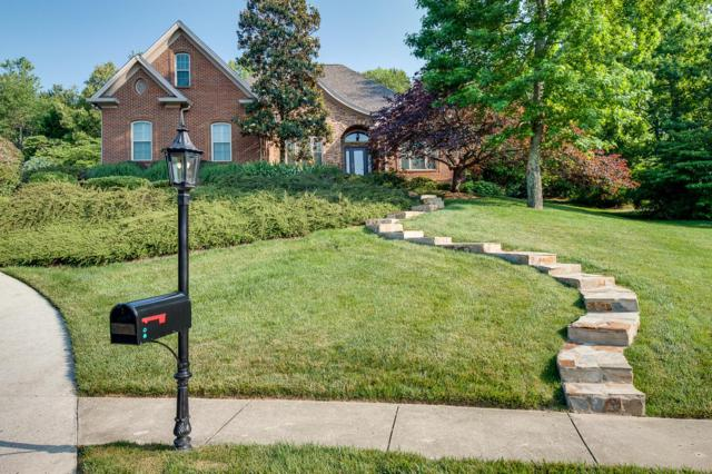 8779 Wandering Way, Ooltewah, TN 37363 (MLS #1300264) :: Grace Frank Group