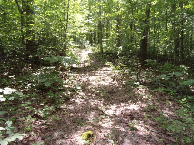 00 Green Ln #6, Pikeville, TN 37367 (MLS #1301358) :: Chattanooga Property Shop
