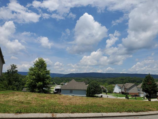 8673 Costa Ln, Hixson, TN 37343 (MLS #1301609) :: Keller Williams Realty | Barry and Diane Evans - The Evans Group