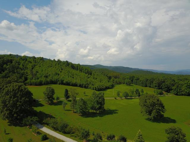 100 Ac Harve Lewis Rd 100 Acres, Pikeville, TN 37367 (MLS #1303096) :: Keller Williams Realty | Barry and Diane Evans - The Evans Group