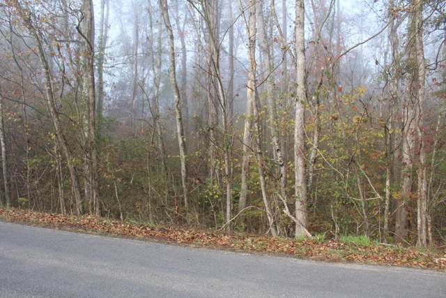 Lot 54 Holly Glen Ln #54, Decatur, TN 37322 (MLS #1309389) :: Keller Williams Realty | Barry and Diane Evans - The Evans Group