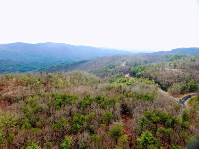 195 Galax Tr #27, Chatsworth, GA 30705 (MLS #1312373) :: 7 Bridges Group