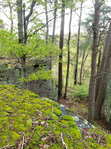 0 S Bridal Veil #7, Monteagle, TN 37356 (MLS #1315336) :: EXIT Realty Scenic Group