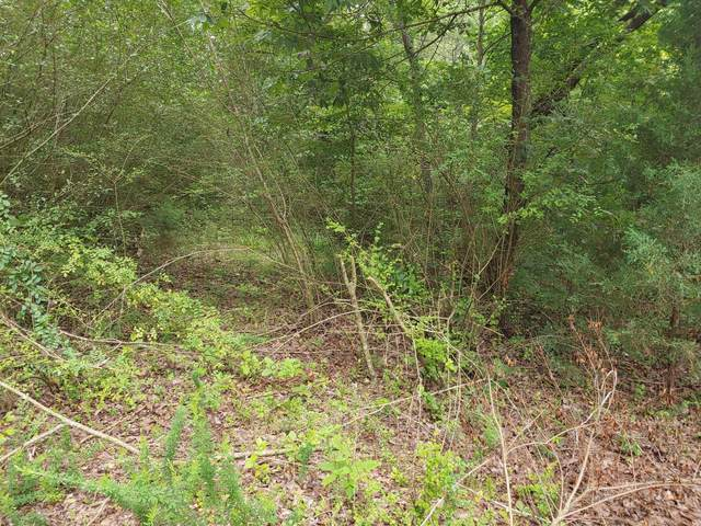 0 E Armuchee East Rd, Lafayette, GA 30728 (MLS #1320165) :: Chattanooga Property Shop