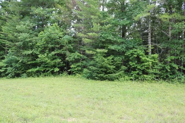 0 Hemlock Bluff Way #48, Deer Lodge, TN 37726 (MLS #1320193) :: Chattanooga Property Shop