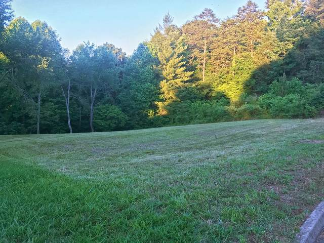 Lot 17 Riceland Dr, Sevierville, TN 37862 (MLS #1320282) :: Keller Williams Realty | Barry and Diane Evans - The Evans Group