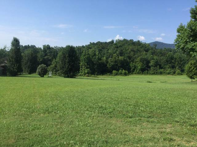 Lot 4 Turkey Run Lot 4, Flintstone, GA 30725 (MLS #1321235) :: Austin Sizemore Team