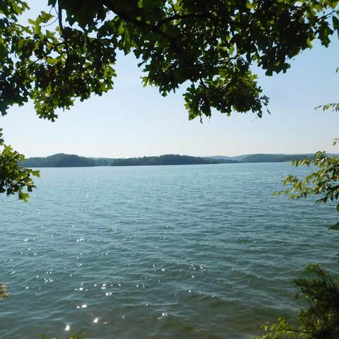 0 Nancy Pt ,Lot 5, Spring City, TN 37381 (MLS #1321359) :: The Weathers Team