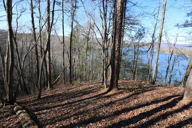 515-518 Rockview Dr 515-518, Spring City, TN 37381 (MLS #1321688) :: Elizabeth Moyer Homes and Design/Keller Williams Realty