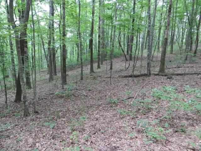 00 Wilderness Way #543, Dunlap, TN 37372 (MLS #1322262) :: 7 Bridges Group