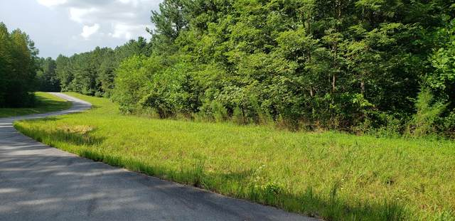 3 Forest View Dr #3, South Pittsburg, TN 37380 (MLS #1322620) :: Chattanooga Property Shop