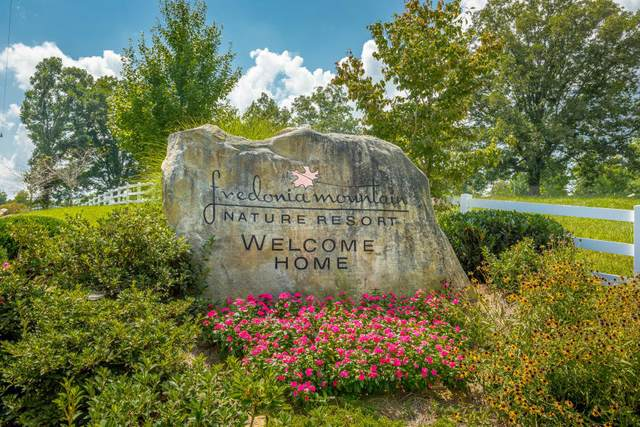 0 Big Falls Tr, Dunlap, TN 37327 (MLS #1324401) :: EXIT Realty Scenic Group