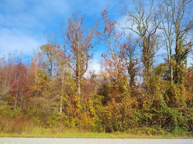 Tbd State Highway 30, Decatur, TN 37322 (MLS #1327269) :: The Mark Hite Team