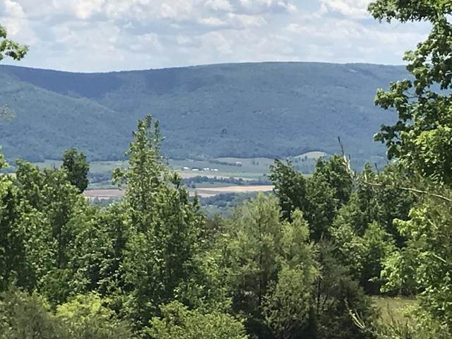 0 Bluff View Dr #43, Dunlap, TN 37327 (MLS #1333181) :: EXIT Realty Scenic Group