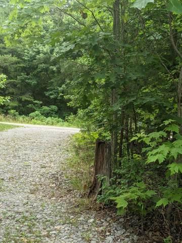 365 Leather Gap Rd, Dunlap, TN 37327 (MLS #1335112) :: Smith Property Partners
