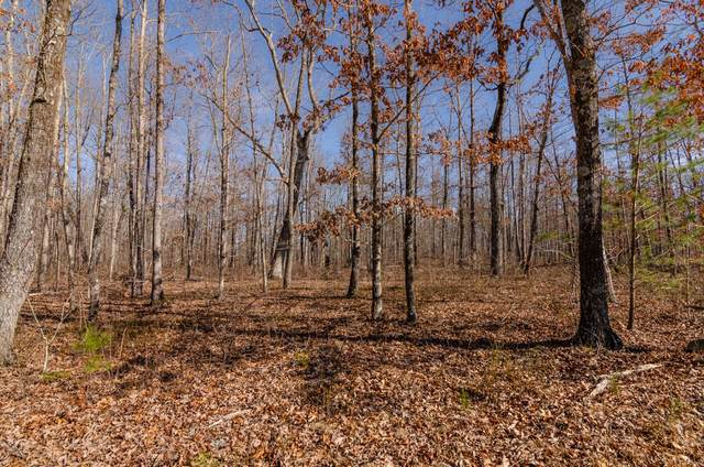 0 Timber Ridge Rd Lot 226, Pikeville, TN 37367 (MLS #1337204) :: The Weathers Team