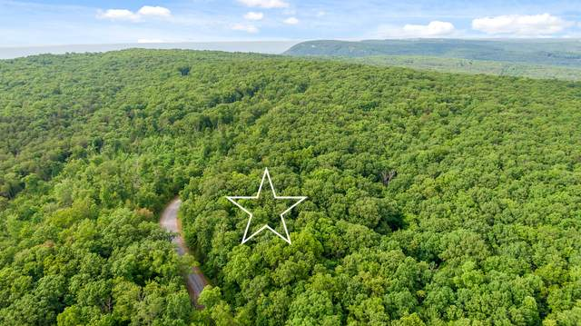 0 Forest Knoll Rd, Dunlap, TN 37327 (MLS #1337734) :: Chattanooga Property Shop