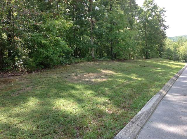 363 Ridgeway Pass #2, Spring City, TN 37381 (MLS #1338284) :: The Hollis Group
