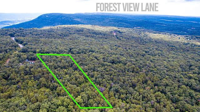 0 Forest View Ln, Dunlap, TN 37327 (MLS #1339604) :: Smith Property Partners