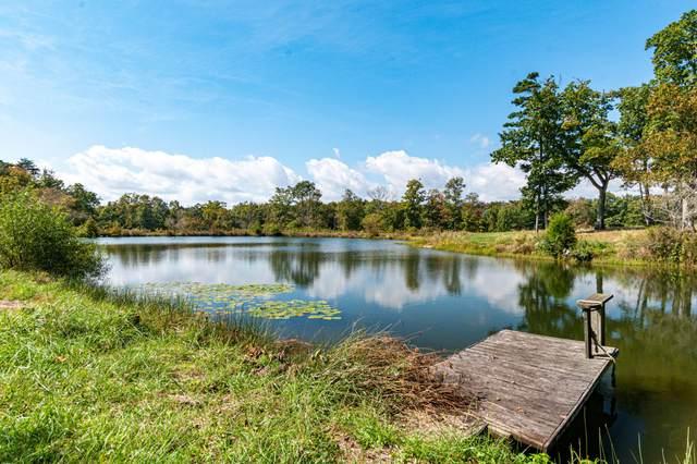 7900 Hixson Springs Rd, Signal Mountain, TN 37377 (MLS #1344665) :: Keller Williams Realty