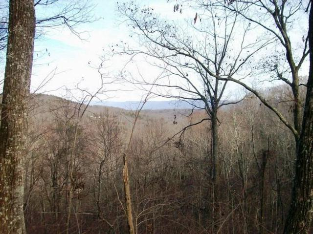 Lot 207 Harlee Vista Dr, Pikeville, TN 37367 (MLS #1228939) :: The Mark Hite Team