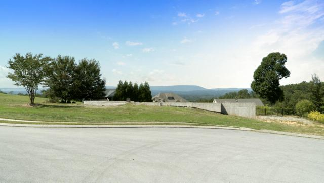 277 The Pointe Dr, Ringgold, GA 30736 (MLS #1262273) :: Chattanooga Property Shop