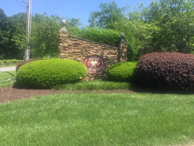 Lot 45 Winding Ridge Rd, Rock Spring, GA 30739 (MLS #1262732) :: The Robinson Team