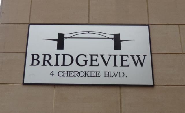 4 Cherokee Blvd Apt 225, Chattanooga, TN 37405 (MLS #1272155) :: Denise Murphy with Keller Williams Realty