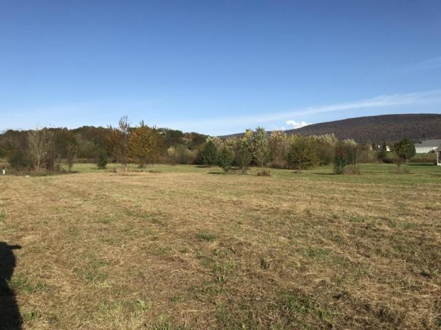 20 C Edgewater, Dunlap, TN 37327 (MLS #1272400) :: The Robinson Team