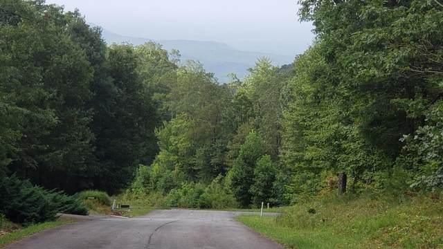 Highway 52, Lot 11, Chatsworth, GA 30705 (MLS #1277481) :: The Hollis Group