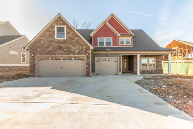 230 Tuscany Village Drive, Ringgold, GA 30736 (MLS #1287141) :: Keller Williams Realty | Barry and Diane Evans - The Evans Group