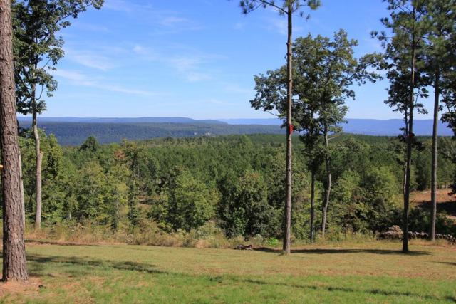 0 Lookout View Dr #171, Jasper, TN 37347 (MLS #1287466) :: Chattanooga Property Shop