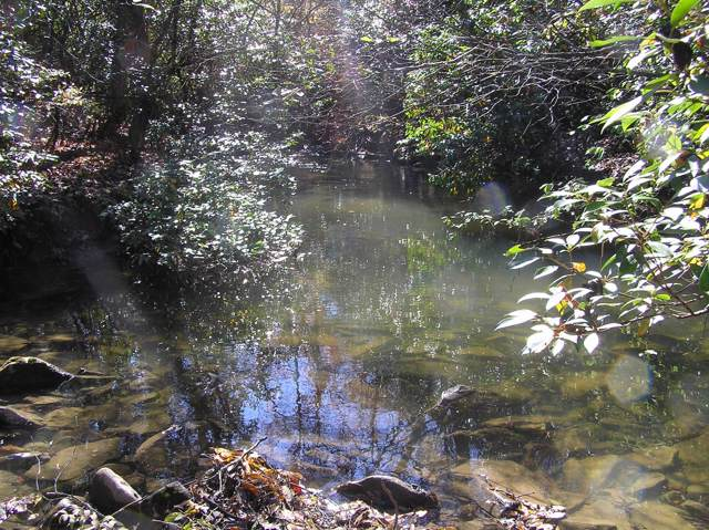 880 Woods Rd, Dunlap, TN 37327 (MLS #1308249) :: Keller Williams Realty | Barry and Diane Evans - The Evans Group