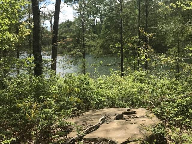 339 Bluff View Dr, Dunlap, TN 37327 (MLS #1311587) :: The Robinson Team