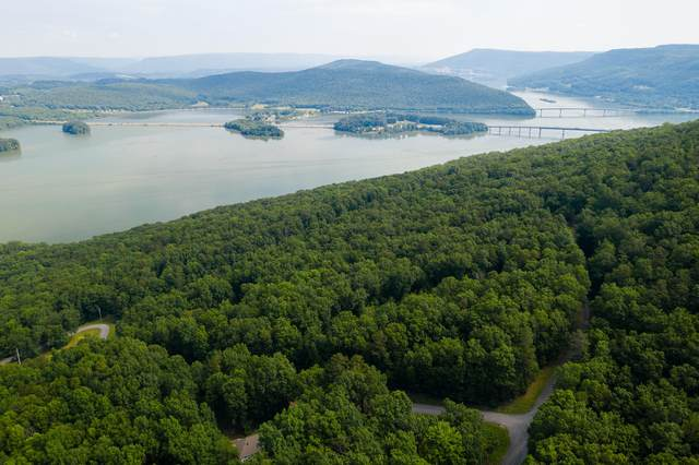 0 Bluffs Rd Lot 5, South Pittsburg, TN 37380 (MLS #1318704) :: 7 Bridges Group