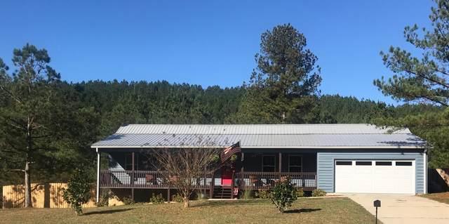 126 Mountain View Cir, Ocoee, TN 37361 (MLS #1321873) :: The Mark Hite Team