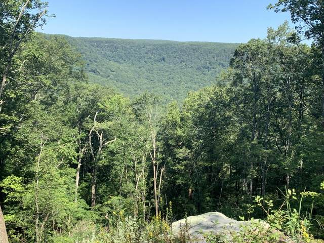 0 High Point Ln #89A-S, Jasper, TN 37347 (MLS #1325928) :: The Chattanooga's Finest | The Group Real Estate Brokerage