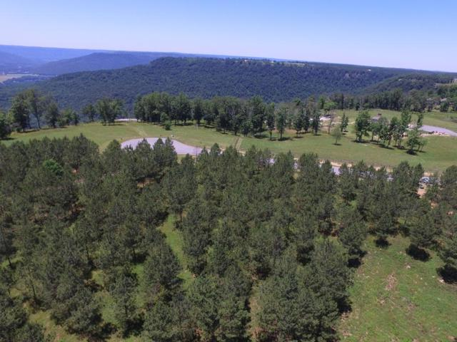 0 Bobcat Tr Lot 212, Jasper, TN 37347 (MLS #1282040) :: Chattanooga Property Shop