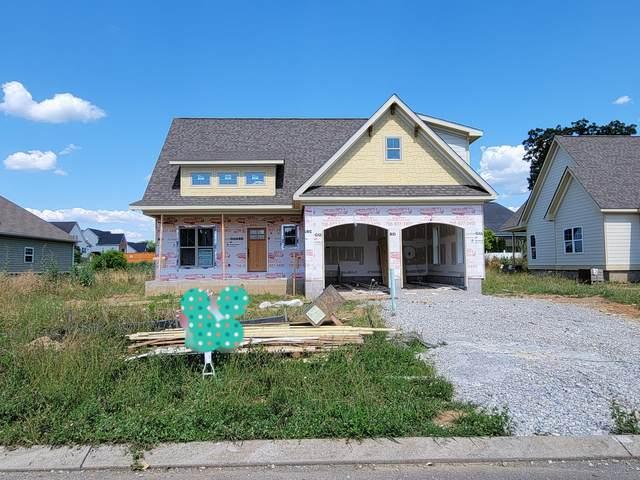 98 Fallen Leaf Dr #101, Chickamauga, GA 30707 (MLS #1331227) :: Smith Property Partners