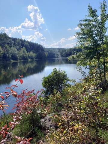 40139 J B Swafford Rd, Spring City, TN 37381 (MLS #1294096) :: EXIT Realty Scenic Group